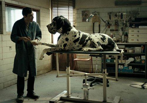 CinemAperitivo: Dogman