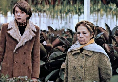 Born to be wild: Harold und Maude