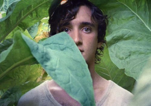 CinemAperitivo: Lazzaro Felice
