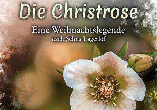 Die Christrose - eine musikalische Weihnachtslegende